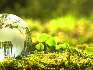 Как да живеем природосъобразно